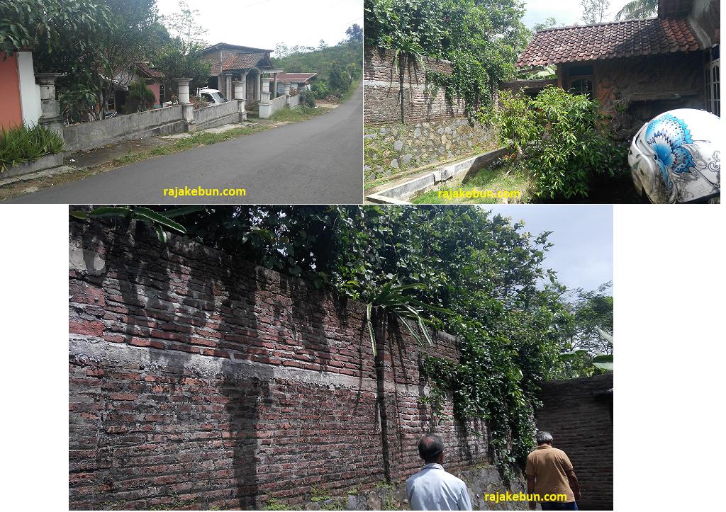Jual Kebun dan Rumah di Pinggir Jalan Raya di Kendal Jawa Tengah