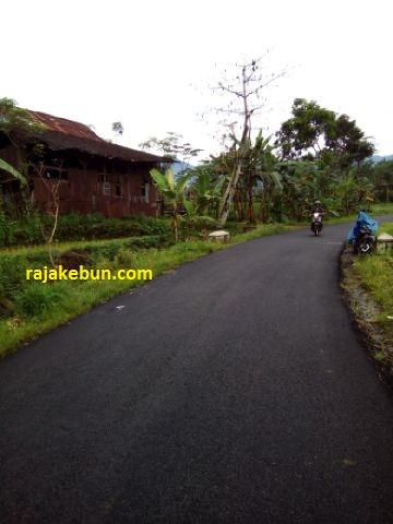 Jual Pabrik Penyulingan Minyak Nilam di Batang Jawa Tengah