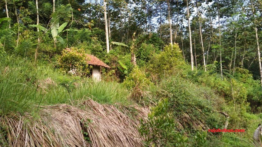 jual tanah di sindangjawa kaduegede